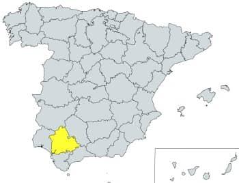 prefijo 955 en España