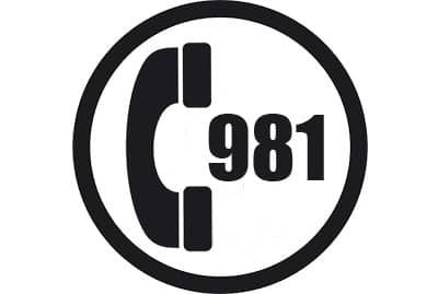 prefijo 981